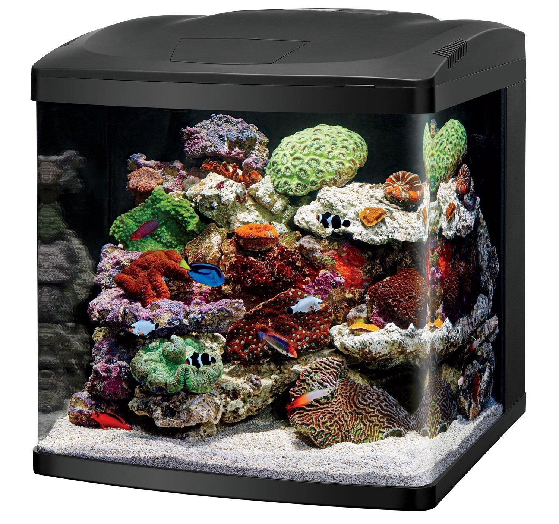 Coralife Fish Tank Best Aquarium Starter Kits
