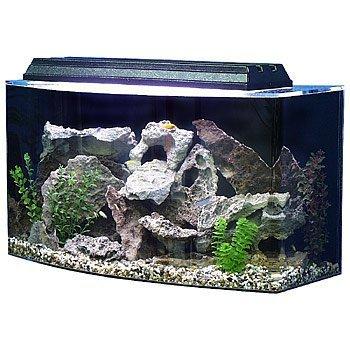SeaClear 36 Best Saltwater Aquarium Starter Kit