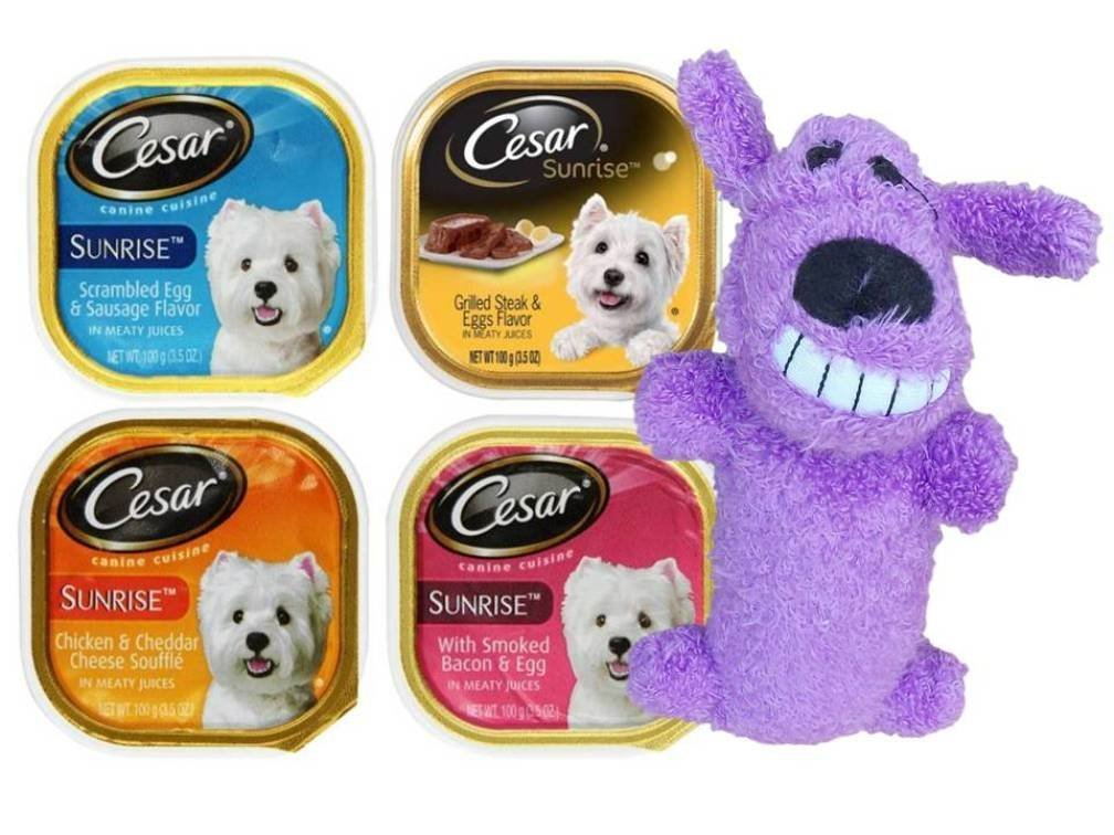 Cesar Sunrise Best Wet Dog Food