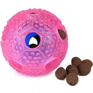 best Airsspu dog chew toy for teeth
