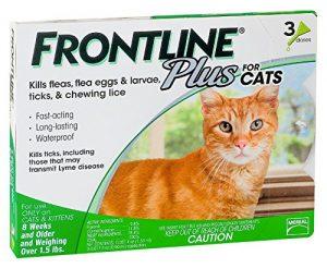 Best Frontline Flea medicine for cats
