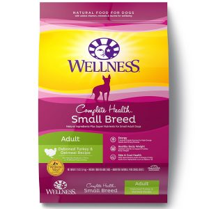 best Wellness dog food for small senior dogs