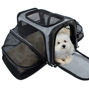 petcarrier for nervous cats