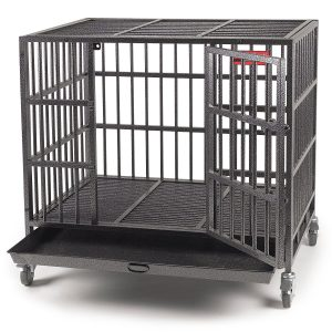 best proselect dog crate for separation anxiety