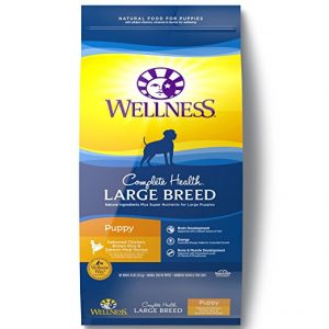 Best Wellness Large Breed Puppy Food For German Shepherd