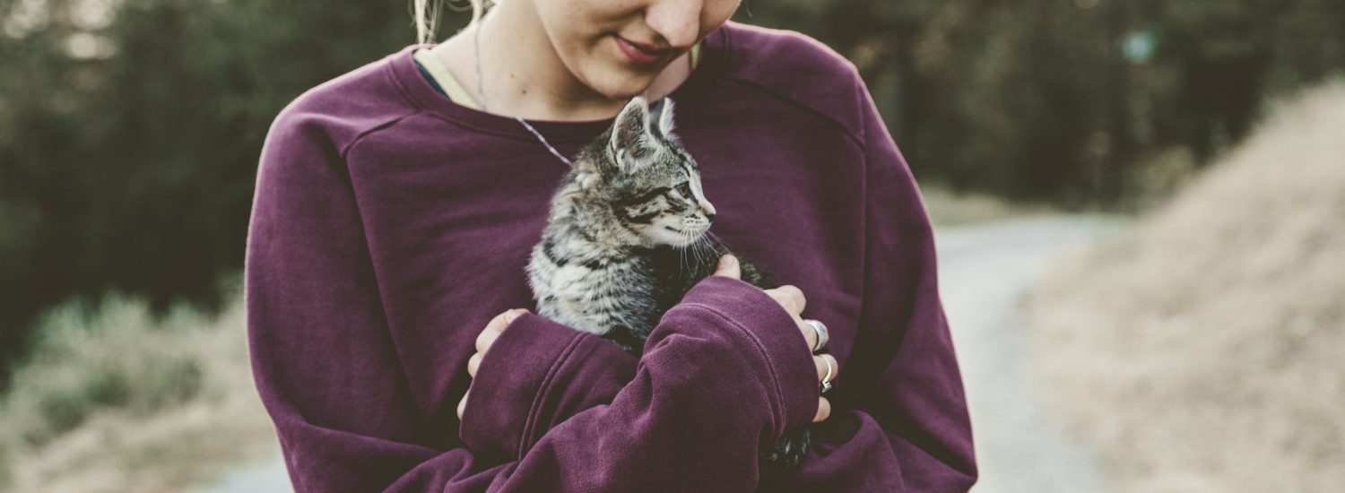 best deworming medicine for cats