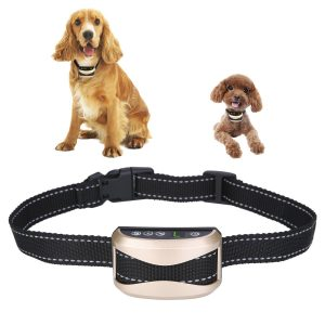 best AuAg no bark collars for small dogs