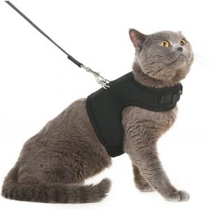 best cat harness Escape Proof