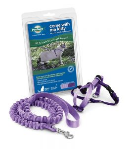best PetSafe cat harness no escape