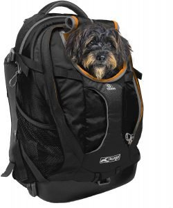 best kurgo hiking pack for dogs